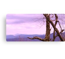 New Jersey in Spring Canvas Print