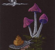 Midnight Toadstools by Hilary Robinson