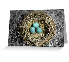 Birds Nest with Eggs Greeting Card