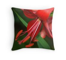Impressive Red Throw Pillow