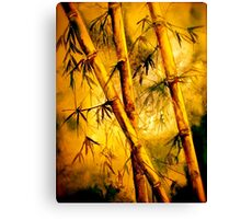 Tropics.. Heat and Old Bamboo Canvas Print