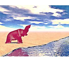 Desert Elephant Quest For Water Photographic Print