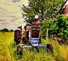 Old Ford Tractor by venny