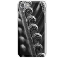 Cycad fronds waiting to unfurl  iPhone Case/Skin