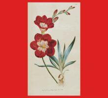 The Botanical magazine, or, Flower garden displayed by William Curtis V5 v6 1792 1793 0084 Ixia Crocata, Saffron Colored Ixia Kids Tee