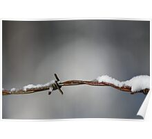 Barbed snow Poster