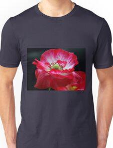 Windswept Unisex T-Shirt