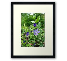Every Day I Got the Blues Framed Print