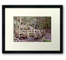 Coal Creek Falls and Foot Bridge Framed Print
