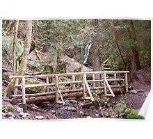 Coal Creek Falls and Foot Bridge Poster