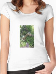 Dinosaur lurking in brush Women's Fitted Scoop T-Shirt