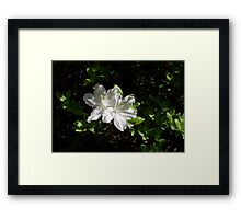 What about White 1 Framed Print