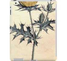 The Botanical magazine, or, Flower garden displayed by William Curtis V7 V8 1794 0056 Argemone Mexicana, Mexican Argemone or Prickly Poppy iPad Case/Skin