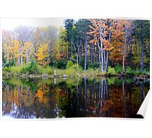 Fall Reflections in The Maple Sugar Woods Poster