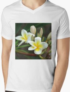 franjipani - from bud to bloom Mens V-Neck T-Shirt
