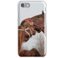 Cedar and Chico - NNEP Ottawa, ON iPhone Case/Skin