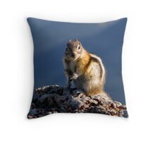 Big Chip of Sulphur Mountain Throw Pillow