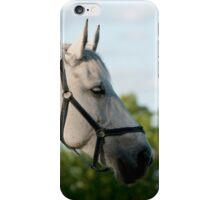 Mercedes - NNEP Ottaw, ON 7 iPhone Case/Skin
