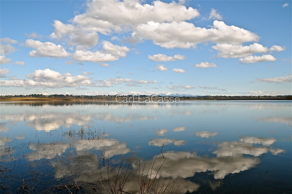 Reflection by Carl LaCasse