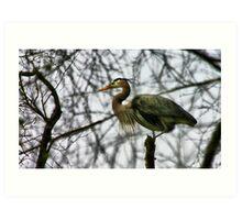 Guard Bird Art Print