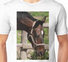Regal - NNEP Ottawa, ON Unisex T-Shirt