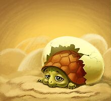 turtle by Antracit