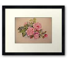 Roses and more roses Framed Print