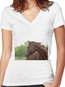Chief - NNEP Ottawa, ON Women's Fitted V-Neck T-Shirt