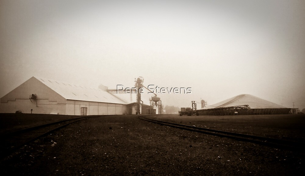 CBH ~ Mullewa by Pene Stevens