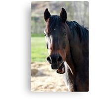 Being goofy Canvas Print