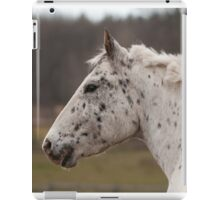 Xerox - NNEP Ottawa, ON iPad Case/Skin