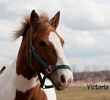 Victoria - NNEP Ottawa, ON by Tracey  Dryka