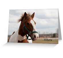 Victoria - NNEP Ottawa, ON Greeting Card