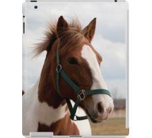 Victoria - NNEP Ottawa, ON iPad Case/Skin