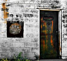 A Portal Into Fantasy or The Door To Reality by Carla Jensen