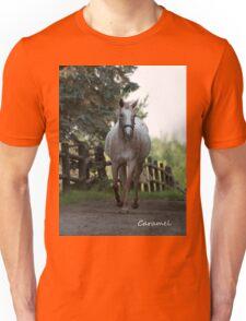 Caramel - NNEP Ottawa, ON Unisex T-Shirt