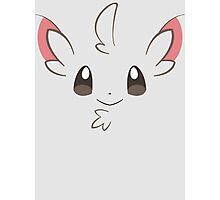 Pokemon - Minccino / Chillarmy Photographic Print