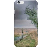 North Wales Tree iPhone Case/Skin