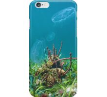 Colorful marine life on seabed with moon jellyfish iPhone Case/Skin