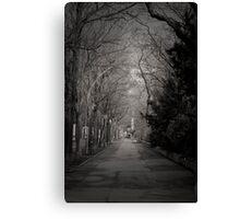 The Path - Austria Canvas Print