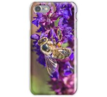 Bee on ornamental sage iPhone Case/Skin