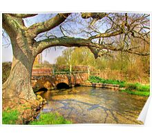 Chalk Stream - Hampshire - HDR Poster