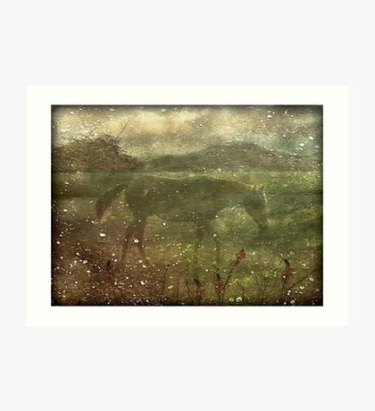 Flora and Fauna Dreamy Collage Art Print