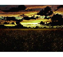 Dark Meadow Landscape  Photographic Print