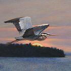 """Great Blue Heron at Pine Island"" by Charles  Wallis"