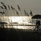 Oceanview at Myrtle Beach, SC by Dannyboy2247