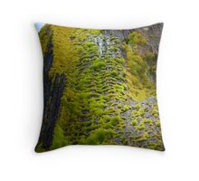 Biosphere Throw Pillow