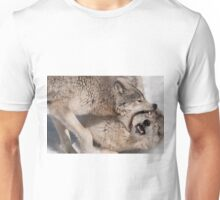 This is not Acupuncture! Unisex T-Shirt