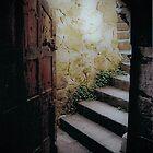 Montsalvat's Best Door by ClareDeLaLune