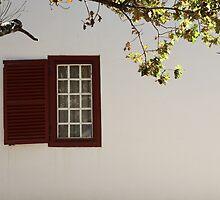 Red window by fourthangel